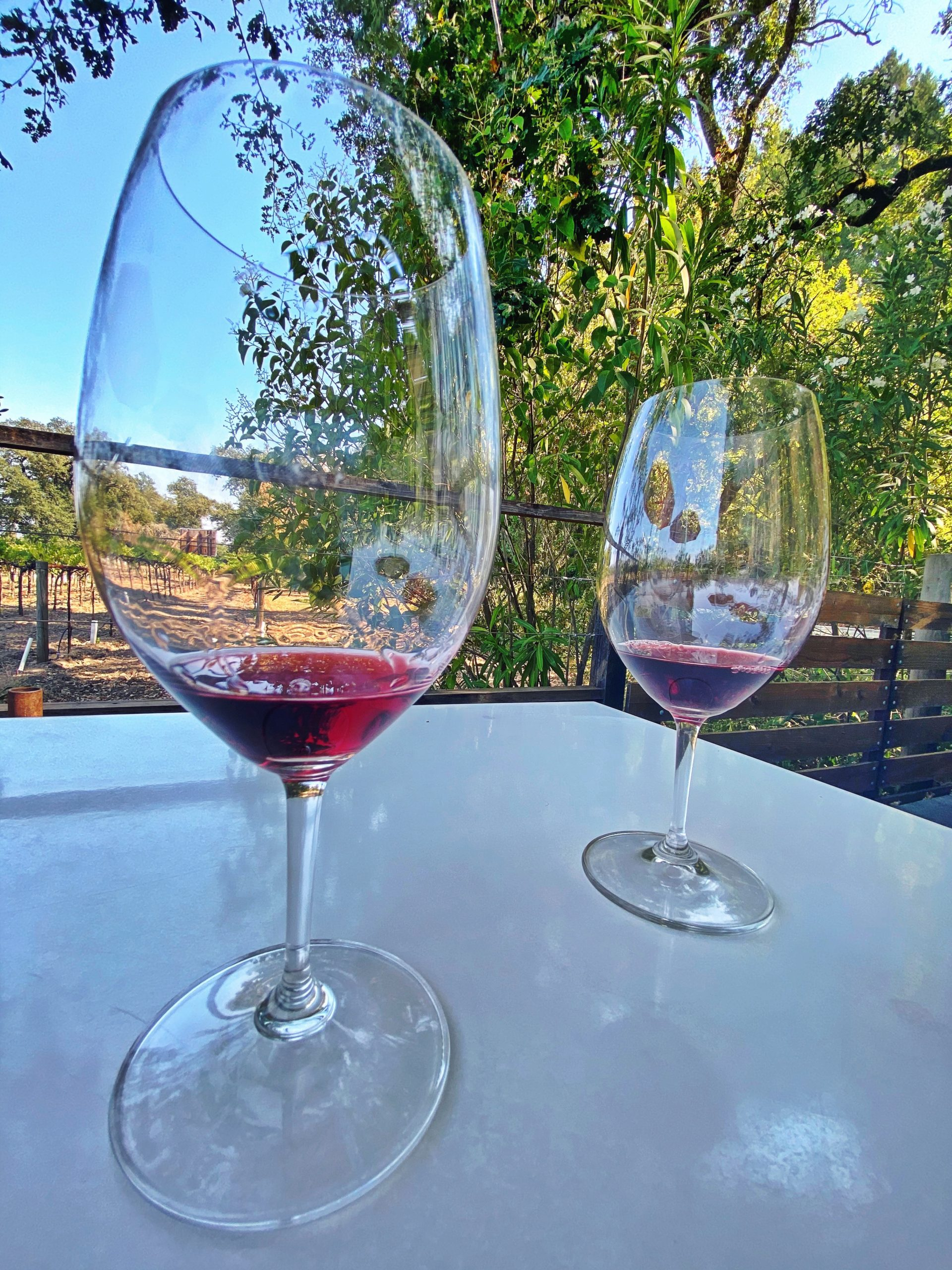 napa-valley-sonoma-wine-country-engagement-celebration-fun-outfits-wine-tasting